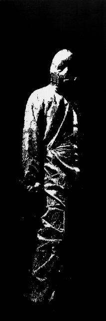 Suit III, 300x100cm, 2013.jpg