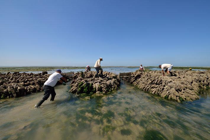La Caloge, écluse à poissons de la Pointe du Grouin‐du‐Cou à La Tranche‐sur‐Mer‐Vendée