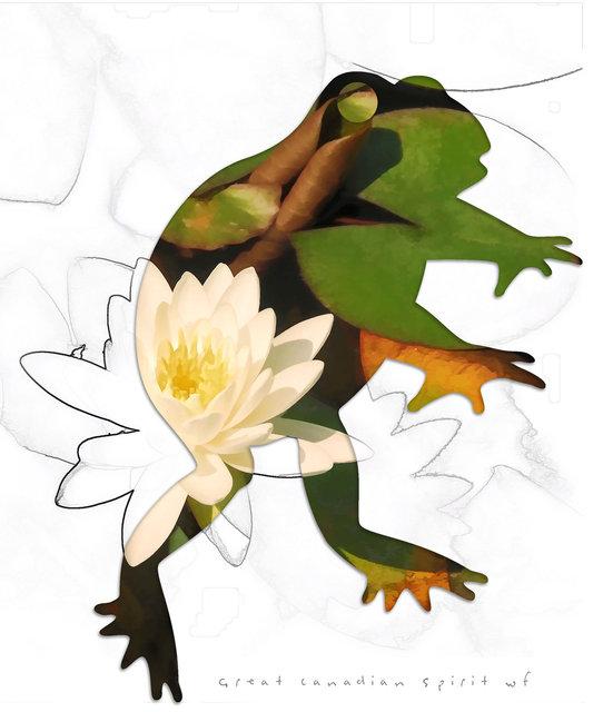frog-08a.jpg