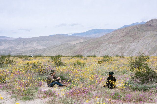 JohnFPeters_WEB_SuperBloom_012.JPG