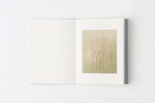 encounters, 33 pages, accordion book. Published by Datz Press in 2015.