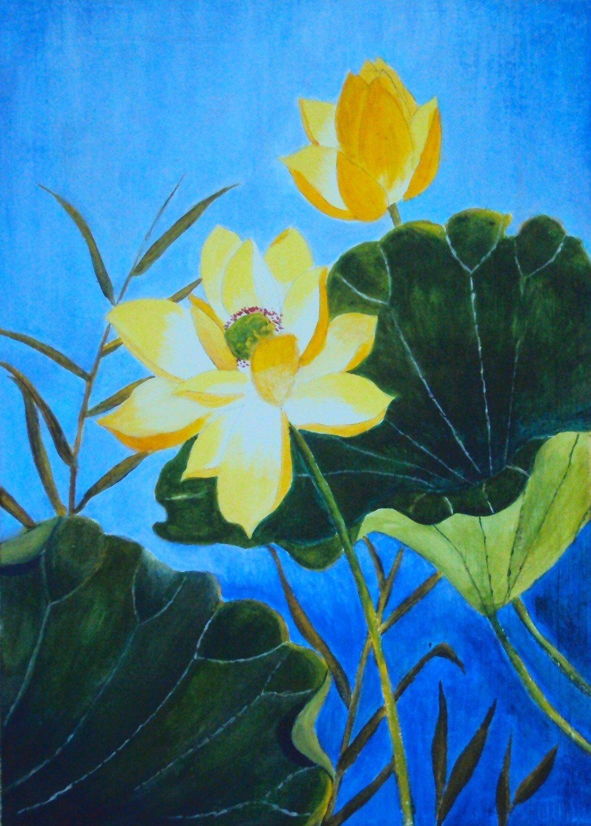 Lotus 2 (2015)