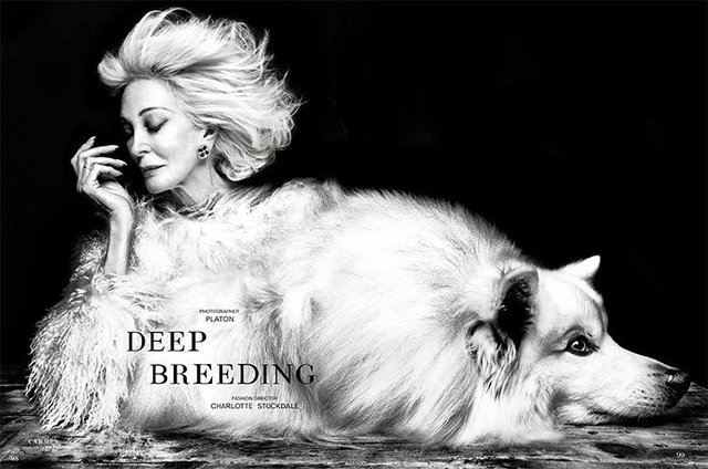 Deep-Breeding-1.jpg