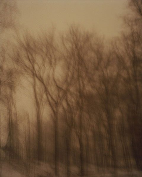 Windy Night, New Jersey, 2010