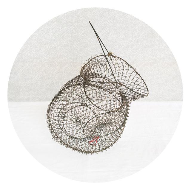 Bait Catch, 2010