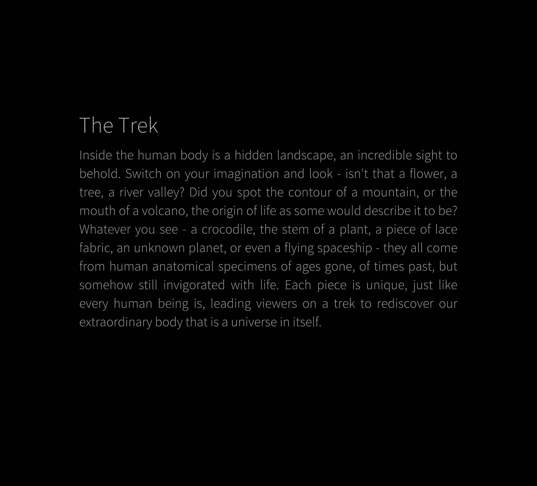 The Trek sataement_page.jpg
