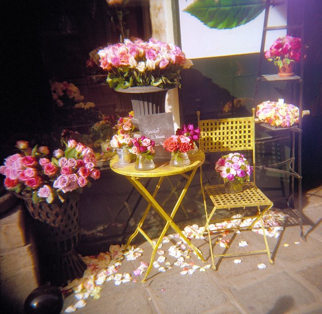 Holga France 83 #11-03_#4_FlowerStore - Version 2