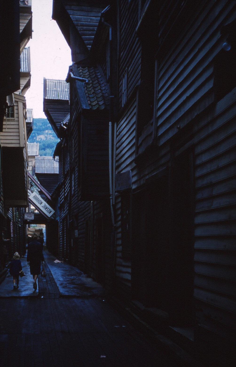 1186 (36) Bergen