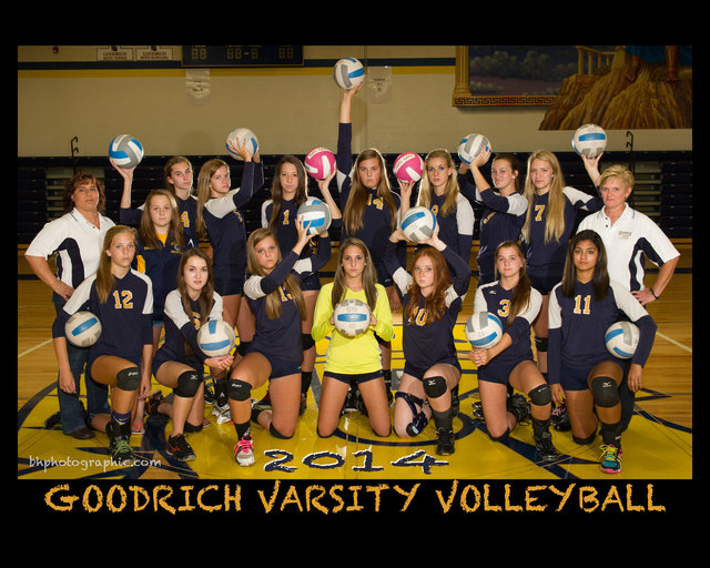 V VOLLEYBALL 2014.jpg