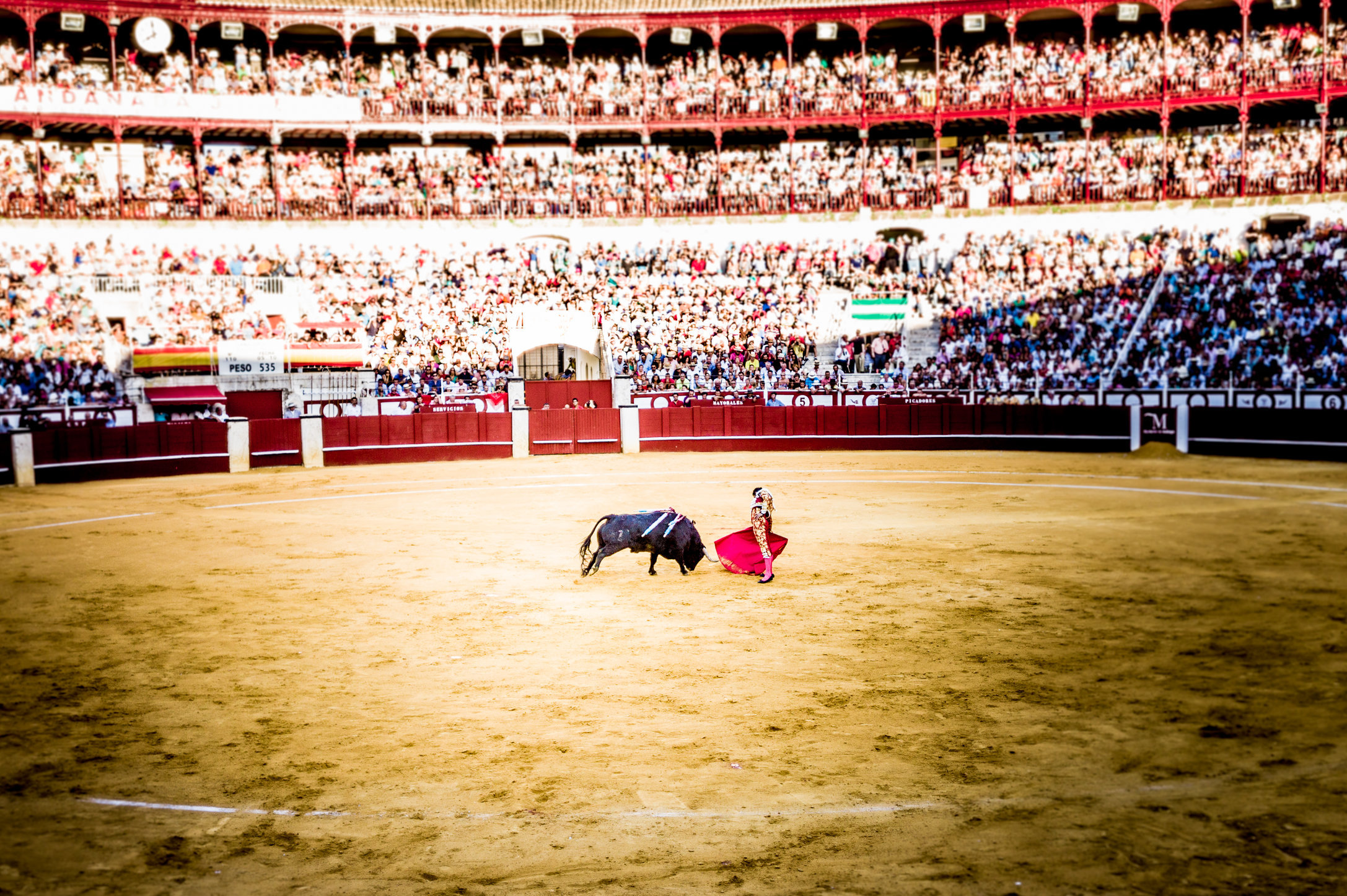 The Bullfight-95.jpg