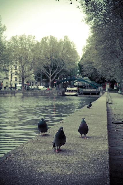 Paris Canals