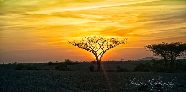 Sunset in the Chalbi Desert - Northern Kenya