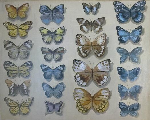 Motyle 40x50 olej płótno