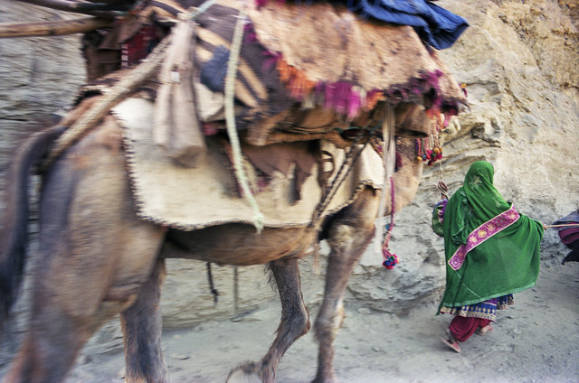 Afghan_0502_C30-8A copy.jpg