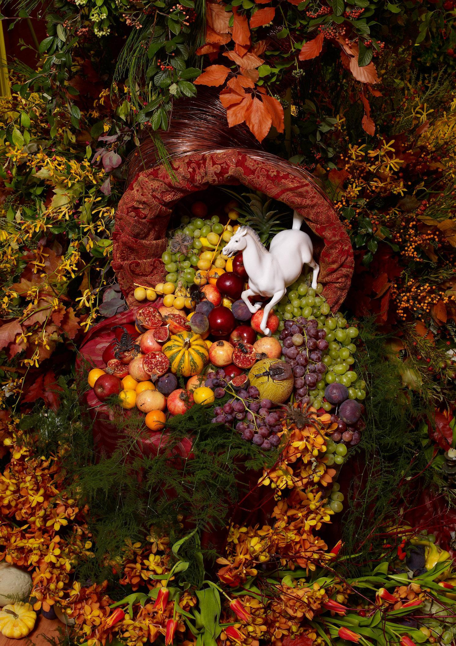 autumn-006988.jpg