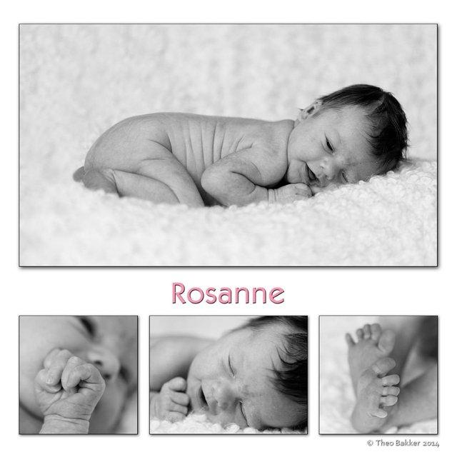montage-rosanne-theo-60-60-M_2500.jpg