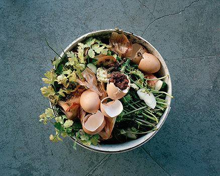 composteggs-parsley.jpg