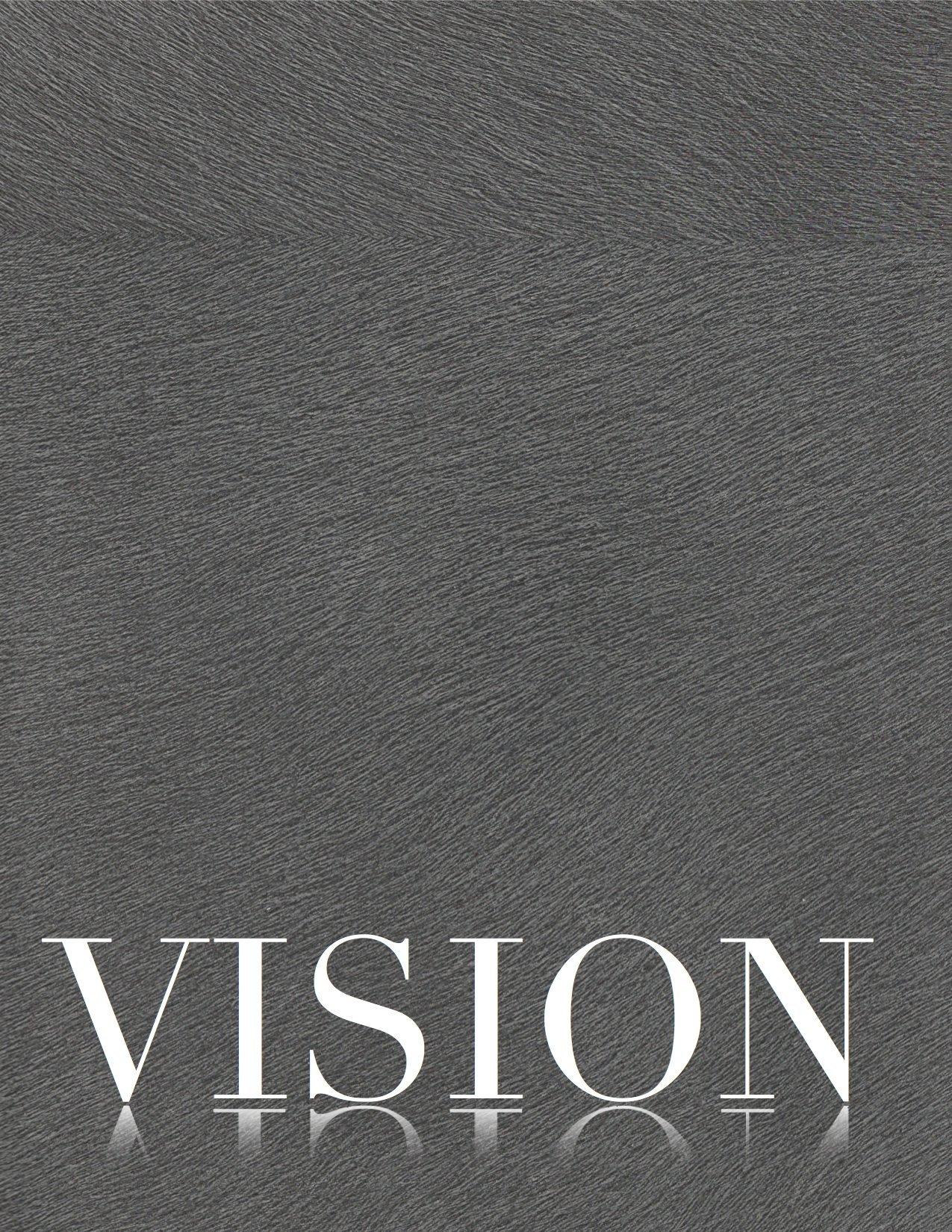 Gina Vision.jpg