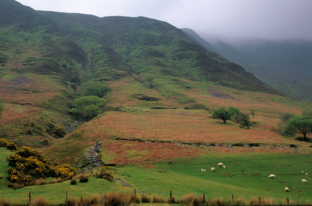Parc national des Brecon Beacons,2002.