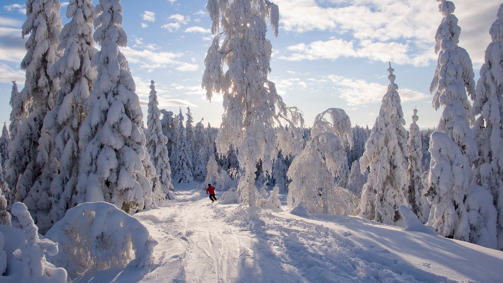 Skiing in Sweden
