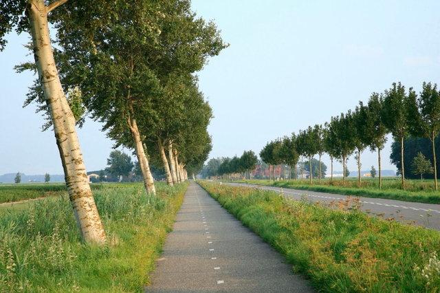 noordoostpolder - zuidwesterringweg