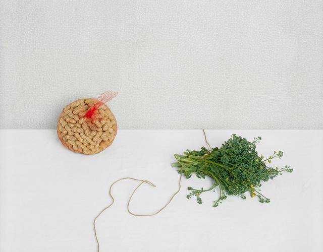 Peanuts and Broccoli, c 2010