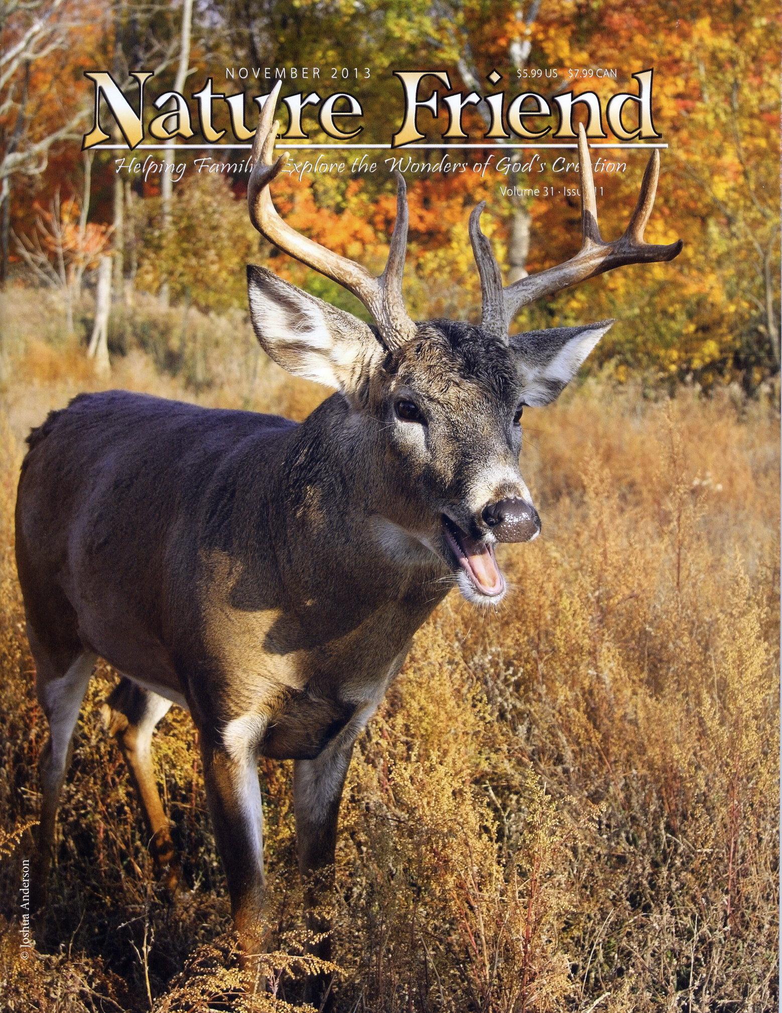 Nature Friend Magazine; © November 2013