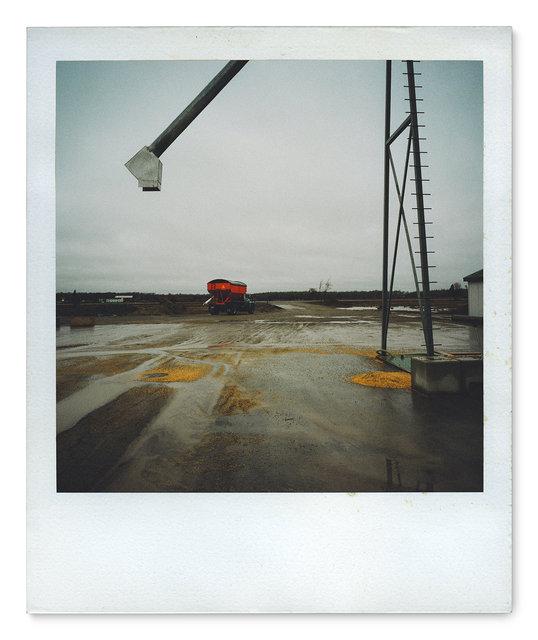 036_Polaroid SX70_rig 4x4.jpg