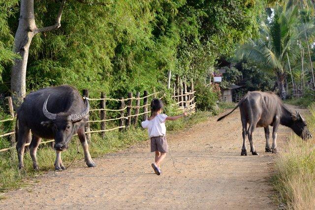 Laos_020.jpg