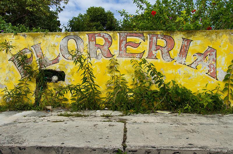Floreria.jpg