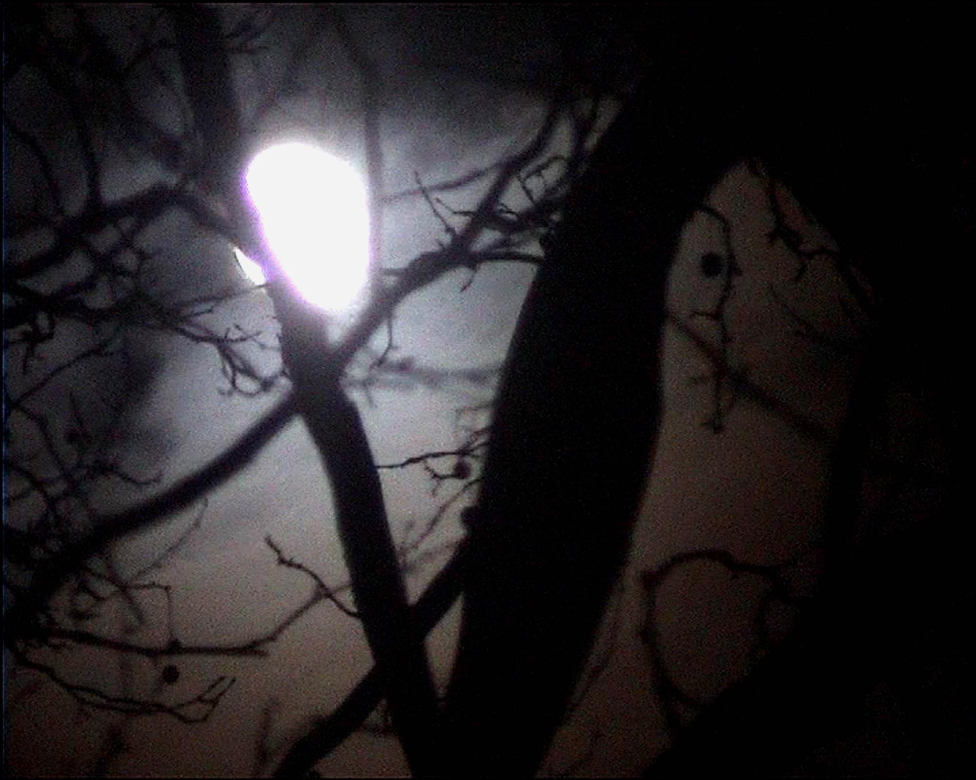 Nan Hoover La Luna 2002 (1 of 2)