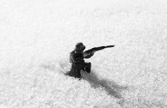 DSC_6389  TIN SOLDIERS N1 small.tif