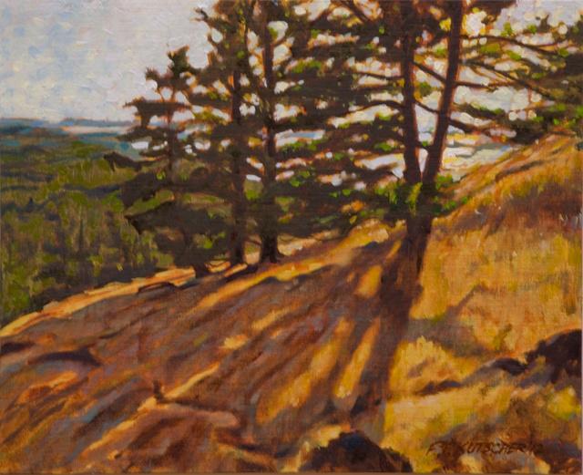 Sun Through Trees on Path Up to the Turtlehead (Orcas Island) - Study