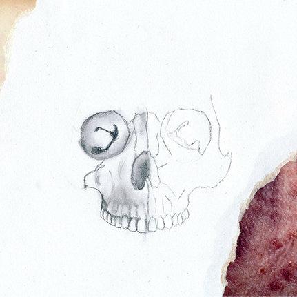 Skin Area/Jarl - Le Petite Mort, (LP, Album), Malignant Records, 2014