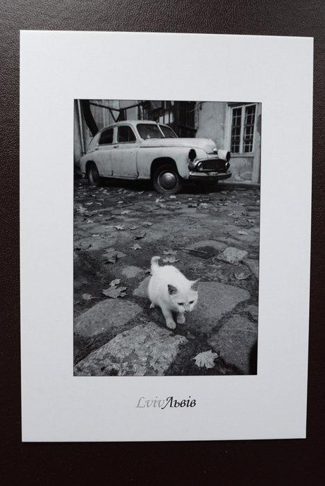 Postcards_(Dyachyshyn)41_resize.JPG
