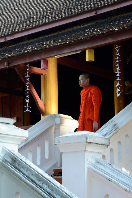 The monk - Laos