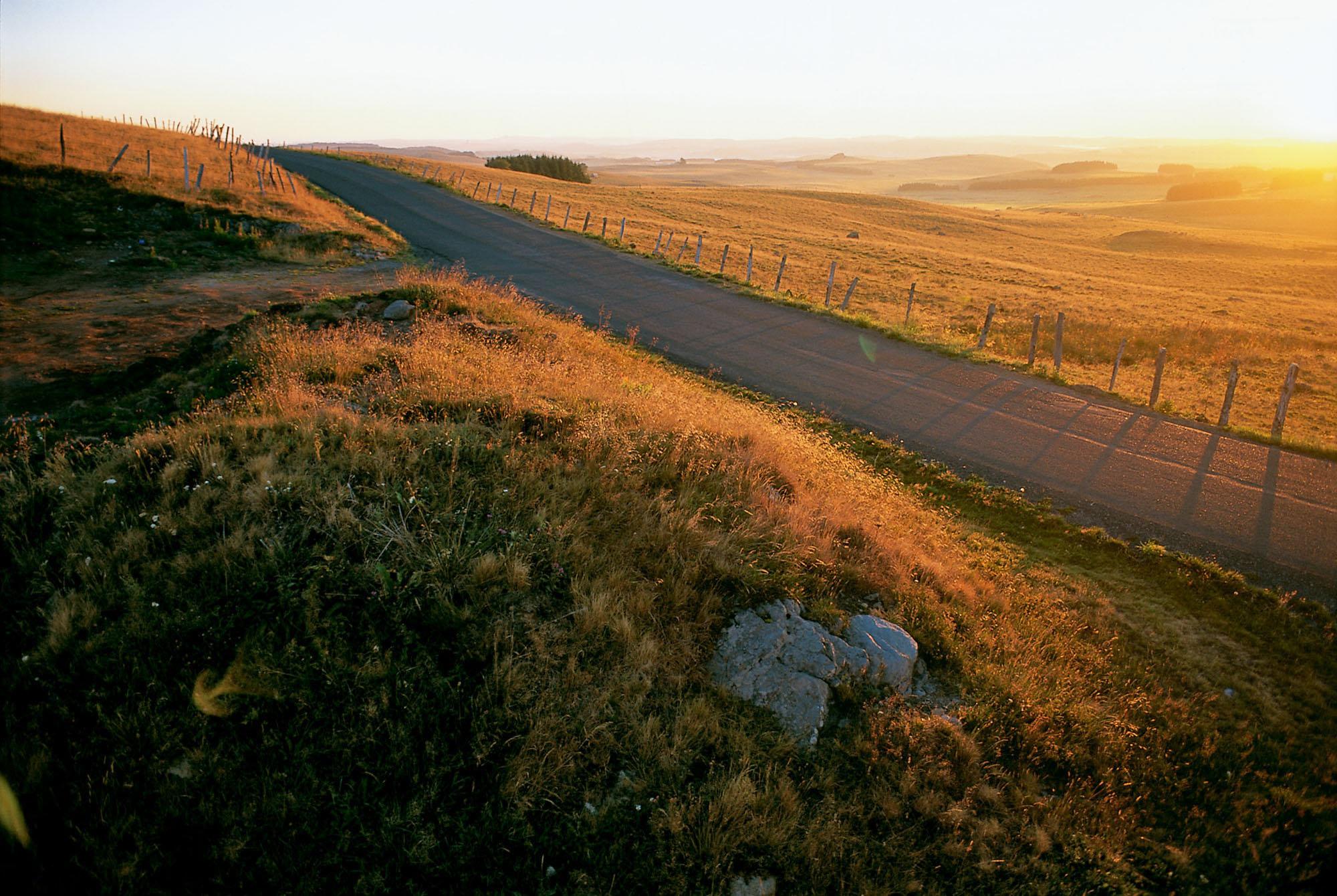 Chemin en Aubrac