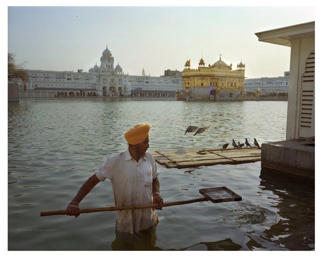 0035_Harmandir-Sahib-india-nicolas-stipcianos.jpg