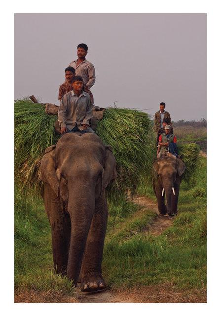 nepal-travel-nico-stipcianos-photographer.jpg