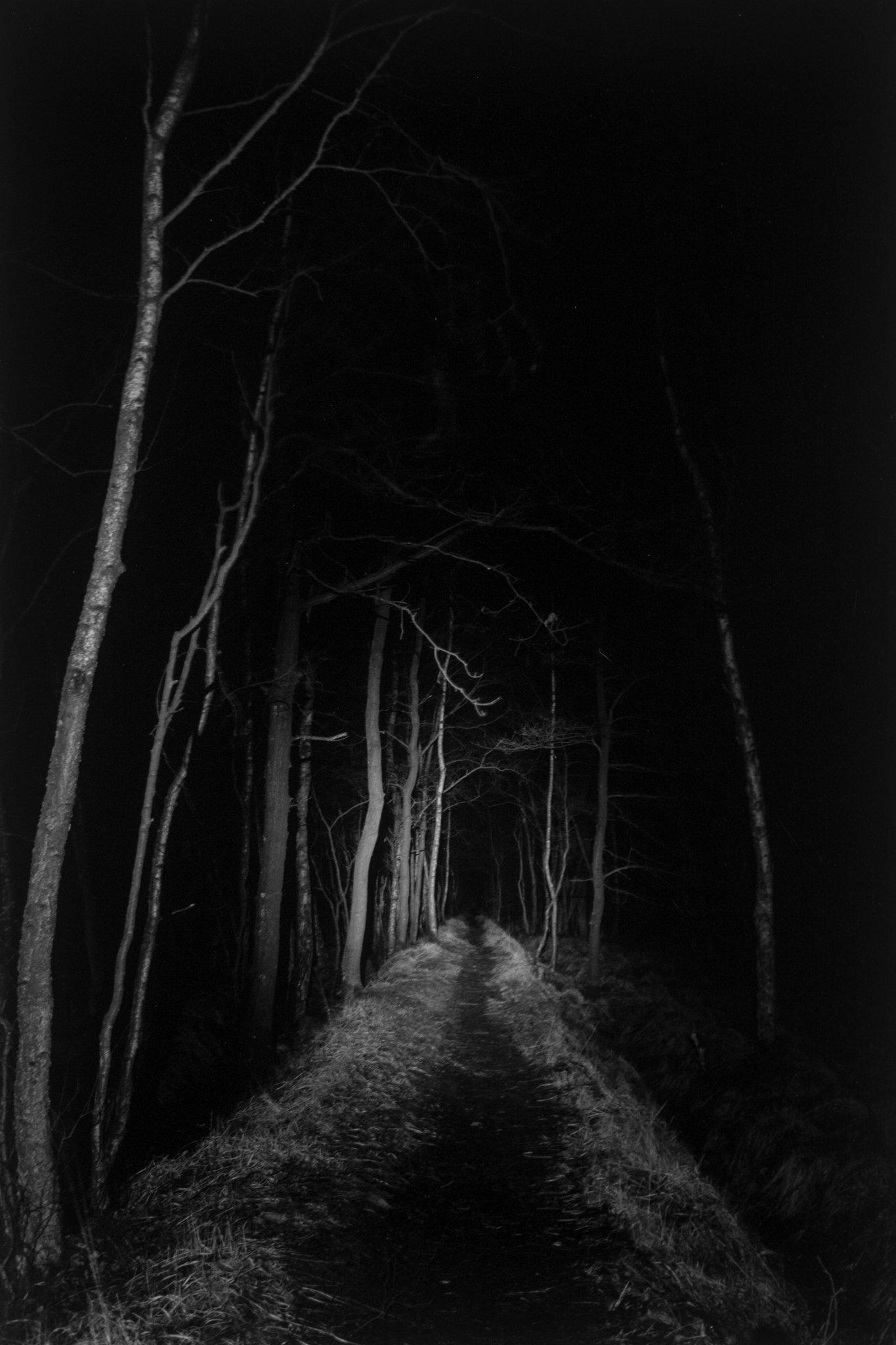 miguel brusch_through the night-05.jpg
