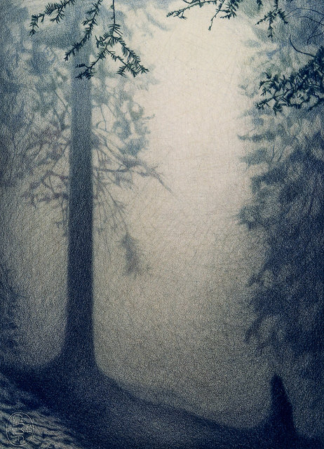 TREES #11, color pencil on paper