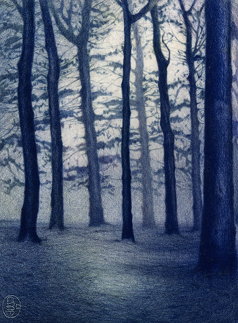 TREES #10, color pencil on paper