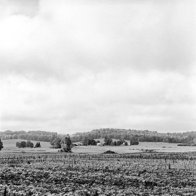 Hillgrove, KY