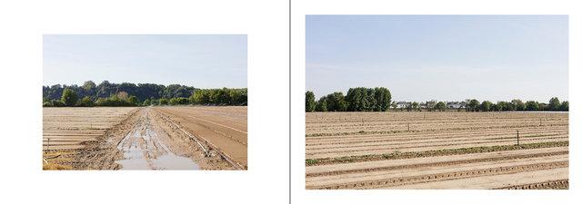 Le Loraux-Bottereau_Mauves-sur-Loire-page084 copie.jpg