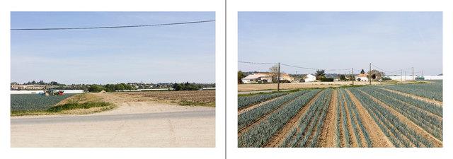 Le Loraux-Bottereau_Mauves-sur-Loire-page060 copie.jpg