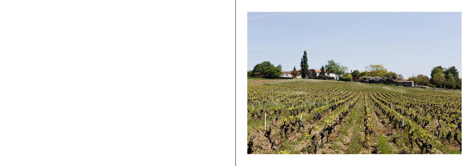 Le Loraux-Bottereau_Mauves-sur-Loire-page008 copie.jpg