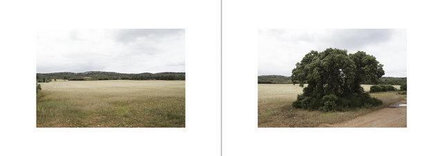 GR2013 - Lançon provence- Berre l'etang-11.jpg