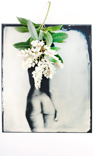 FLOWERS_1_003.JPG