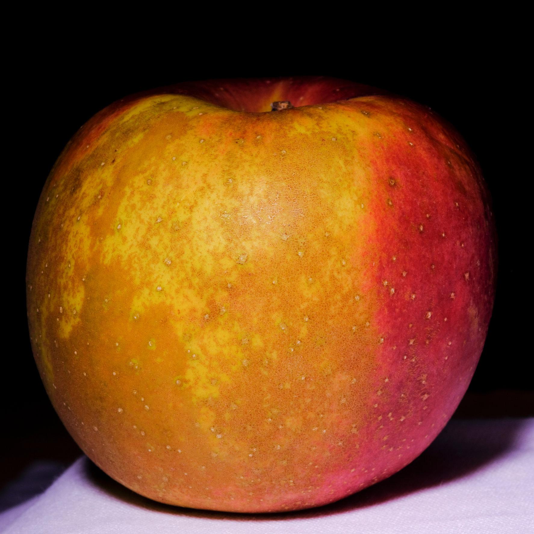 Still Life Series Apple -0139.jpg