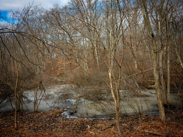 Rizzo_John_A_Winter,_Beaver_Brook,_Rock_Creek_-012.jpg